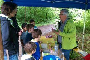 Roeser: Une journée dans la forêt