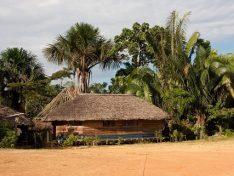 Klima-Bündnis Studienreise nach Amazonien