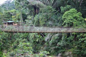 """Konferenz in Beckerich """"Studienreise nach Ecuador – Wie ein indigenes Volk den Regenwald schützt"""""""