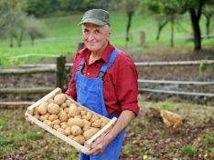 Das Klima-Bündnis unterstützt das Projekt 'solidarische Landwirtschaft'