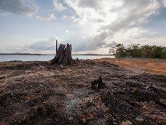 6., 7. und 8. November: Premiere in Luxemburg für Dokumentarfilm über Belo Monte-Staudamm
