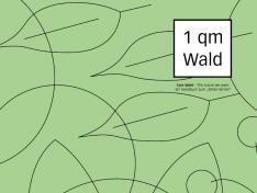 """Material """"1 Quadratmeter Wald"""" zur Ausleihe für Klassen und Jugendgruppen"""