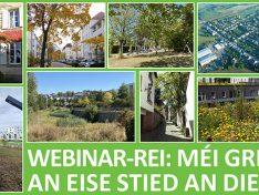 Replay: Renforcer la végétalisation de nos villes et villages