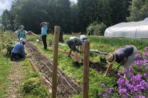 Klima-Bündnis Lëtzebuerg: Cours d'introduction à la permaculture