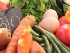 Replay: Promouvoir les produits régionaux et biologiques dans les établissements publics et les cantines